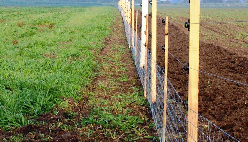 Vinex XXL kombinált villanypásztor kerítés