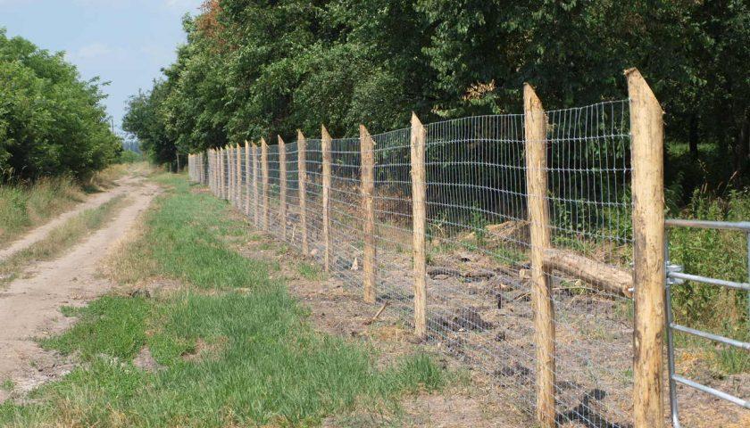 erdő védelme Vinex villanypásztor