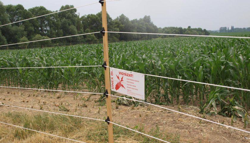 mezőgazdasági kerítés Vinex villanypásztor